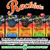 Coklat Rocklate - Oleh-Oleh Batam